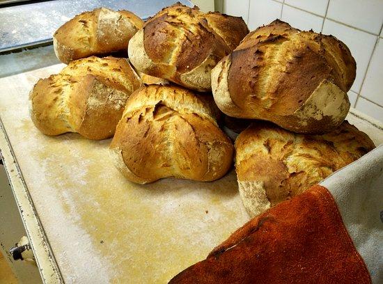 Pasteleria los Álamos-La casa de los piononos: nuestro pan