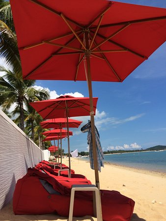 The Coast Koh Samui - Adults Only Resort and Spa: Liegesäcke sehr bequem