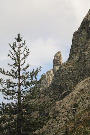 写真Restonica Trail枚