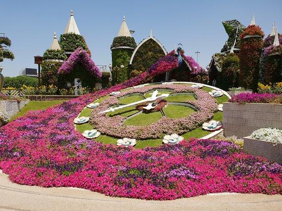 Dubai Miracle Garden: Flower clock