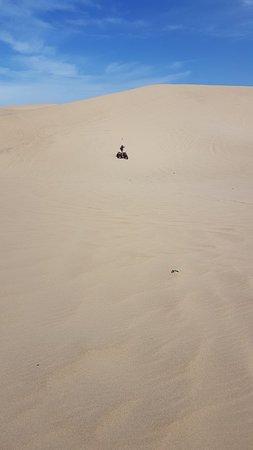 Grover Beach, CA: Oceano dunes