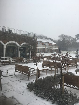 Chewton Glen Hotel & Spa: View from Lounge