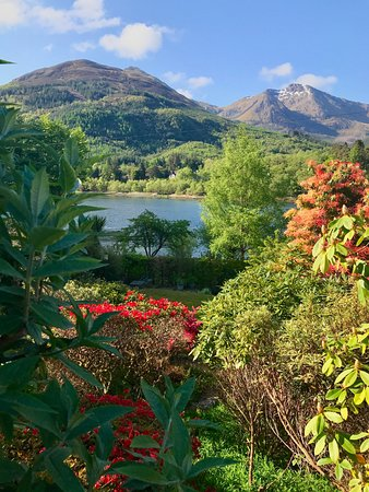North Ballachulish, UK: View from hotel grounds