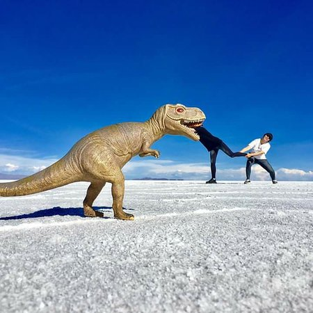 Brisa Tours: Salar de Uyuni - Entretenimiento3