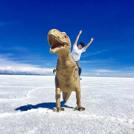 Brisa Tours: Salar de Uyuni - Entretenimiento4