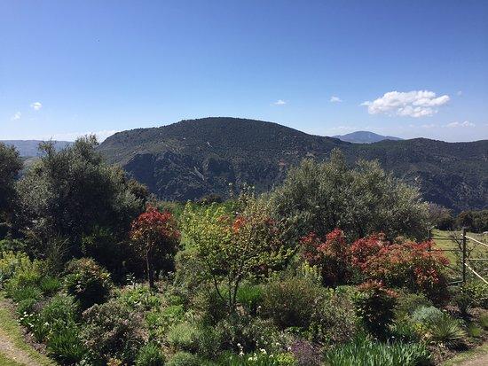 Jardin de la Alpujarra张图片