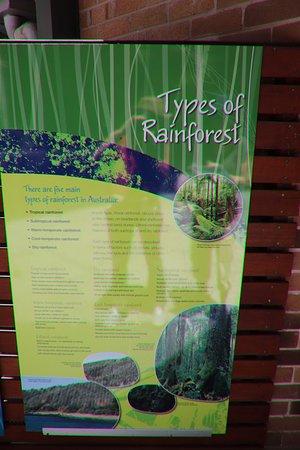 Sea Acres Rainforest Centre Port Macquarie: Info panel
