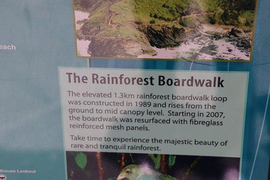 Sea Acres Rainforest Centre Port Macquarie: The boardwalk