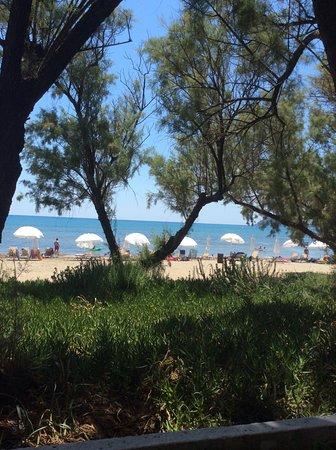 Louis Zante Beach: view from beach restaurant