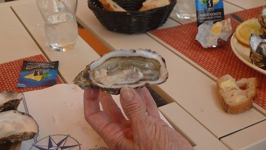 """Bouin, France: frische Austern mit etwas Zitrone schmecken nach """"Meer"""" und """"mehr"""""""