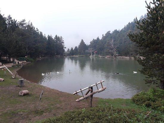 Limni Golu Tabiat Parki Photo