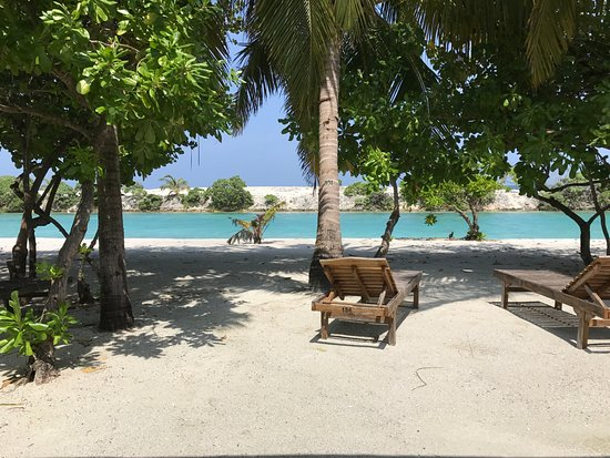 Paradise Island Resort & Spa: View from Superior Beach Bungalow
