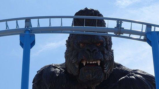 Carthage Land Hammamet: King Kong