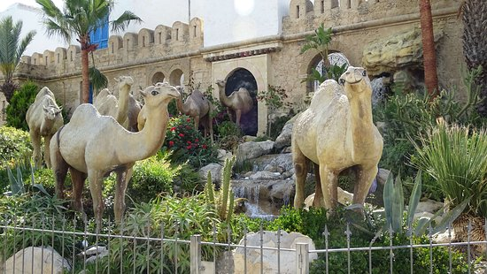 Carthage Land Hammamet: Sculptures de chameaux