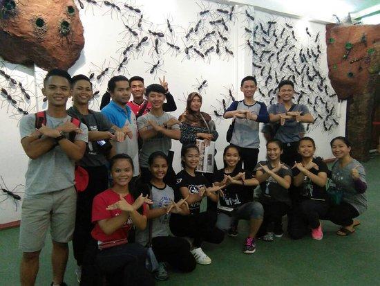 Borneo Ant House