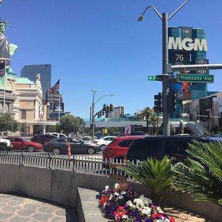 拉斯维加斯大道照片