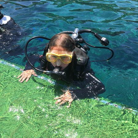 The Waterhoppers Diving School Photo
