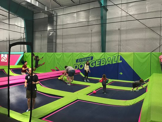 Shell We Bounce Trampoline Park : Shell We Bounce Dodge Ball Court