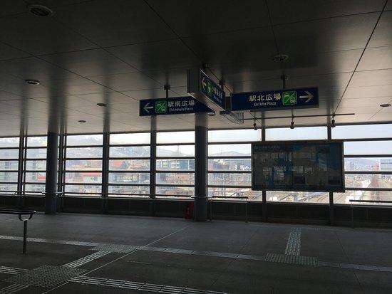 荣湾小樽照片