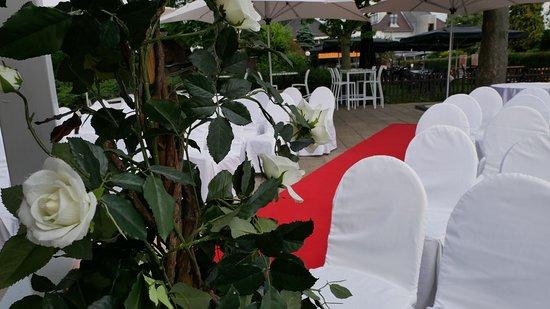 De Theetuin Rijsoord: rode loper naar prieel