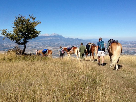 Scanno, Italie : Walking with ponies on a Sacred Walks tour in the Majella National Park, Abruzzo, central Italy.