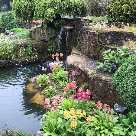 Wisley, UK: photo8.jpg