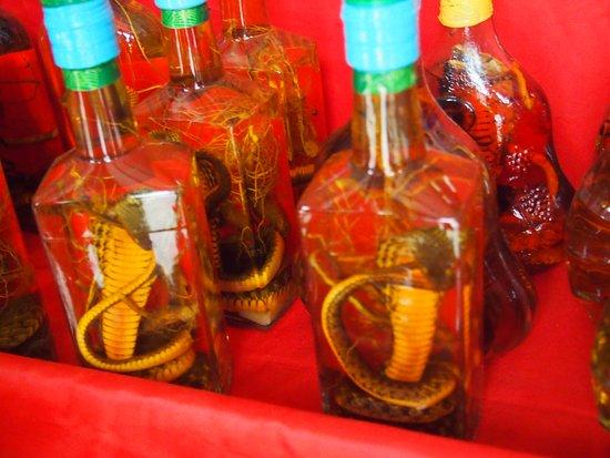 Golden Triangle: ラオス側で売っている蛇のお酒