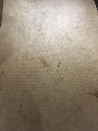 Bois Colombes, Francia: This is what the carpet looks like.