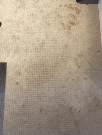 Bois Colombes, Francia: coffee (?) stains on carpet