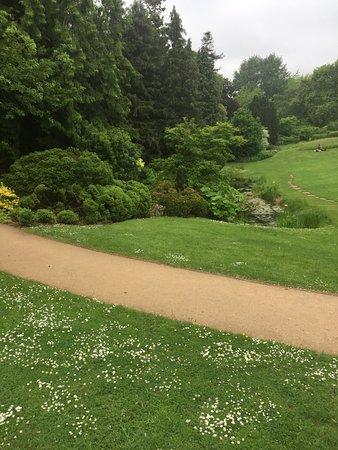 Royal Fort Gardens: pretty contemplation pond