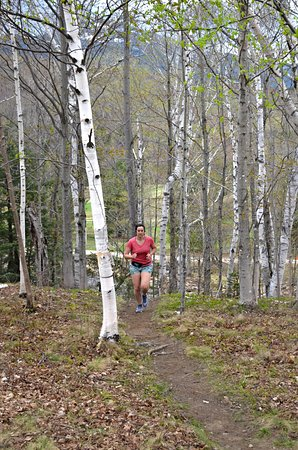Great Glen Trails Outdoor Center: Salomon Spring Running & Walking Series