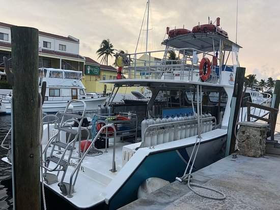 Ocean Divers (Key Largo) - 2019 All You Need to Know