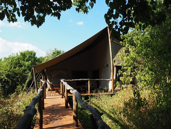Linyanti Reserve, Botswana: Tent #10 as you walk towards it on the elevated path way. It had an outside sitting area