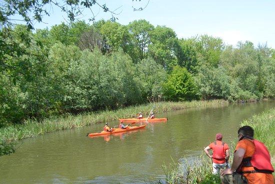 Romanian Adventure : Exercise kayaking on Neajlov river, 30 km far from Bucharest
