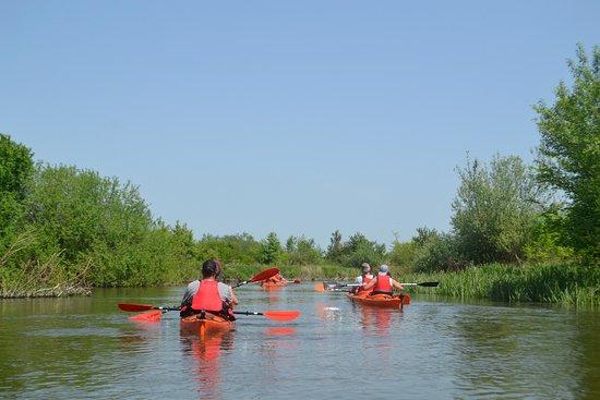 Romanian Adventure : Kayaking on Danube Delta