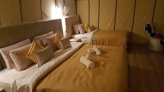 Luxury Oasis Camp: Lu