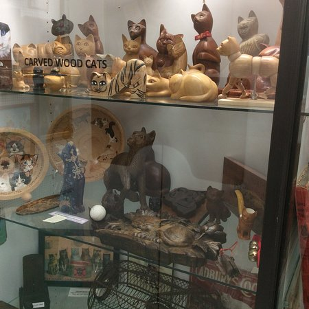 The American Museum of the House Cat ภาพถ่าย