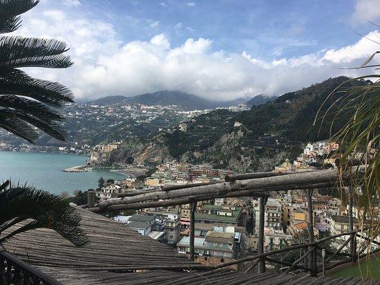 Hotel Botanico San Lazzaro: View