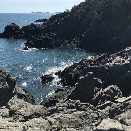 Western Head Preserve Cutler Maine