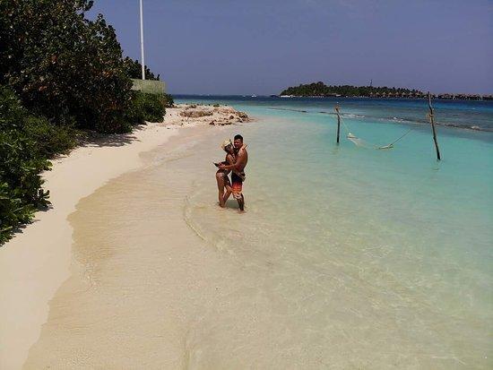 Surf Retreat: Bikini Beach