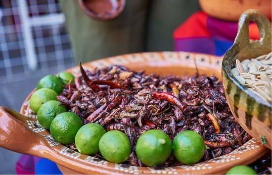 Mexico City, Mexico: Insects are a traditional ingredient in local cuisine, with grasshoppers, worms and ant larvae