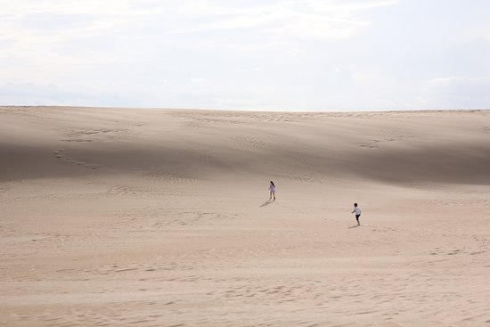 Jockey's Ridge State Park: huge open areas
