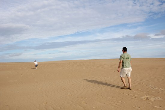 Jockey's Ridge State Park: plenty of room for kids to run!