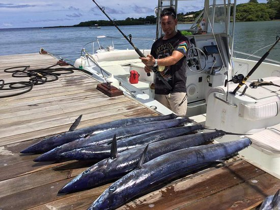 West End, Honduras: Captain Enrick caught 5 wahoo.