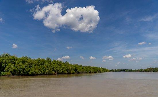 Darwin's Best Jumping Crocodile Cruise: beautiful Adelaide River