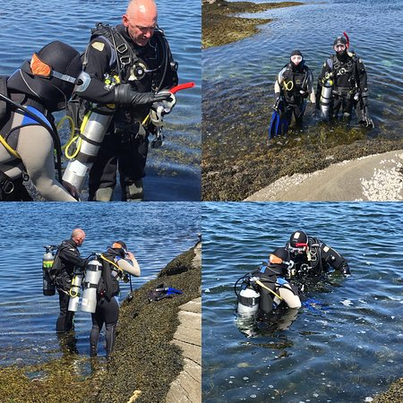 Nanaimo Dive Outfitters: Watching divers descend from the Shepherd