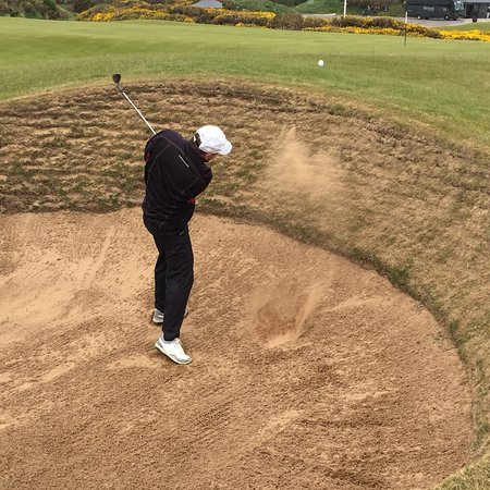 The Experience St Andrews : photo5.jpg