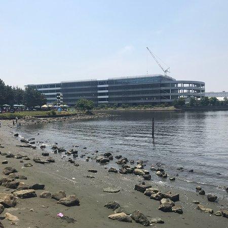 Oi Central Seaside Park