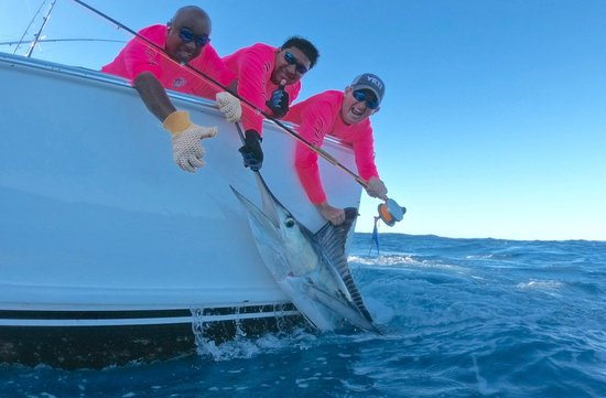 Quepos, Costa Rica: Marlin on fly
