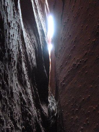 The Wildland Trekking Company : Peekaboo canyon